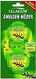 Celaflor Ameisen-Köder, Praktische Köderdose zur Bekämpfung von Ameisenim Haus und auf Terrassen mit schneller und zuverlässiger Nestwirkung, 2 Dosen