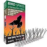 Aspectek Taubenspikes- Spikes zur Vogelabwehr - wetterfeste Taubenspikes und Vogelspikes - Polycarbonat oder Edelstahl