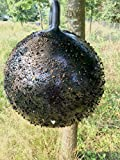 Holland Animal Care Horse Fly Trap Ball